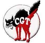 CGTLogoGato